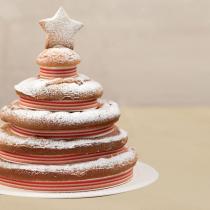 dress-cake-natale-04
