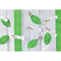evergreen-10