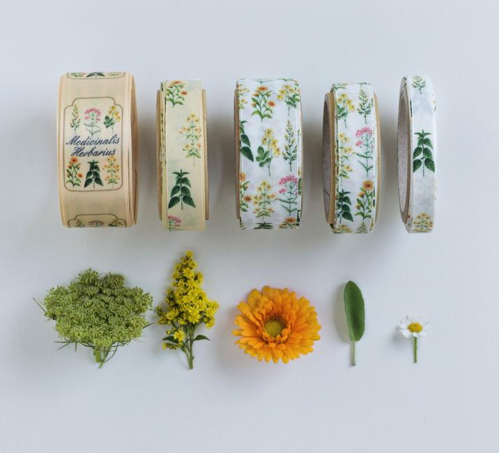 nastri decorativi erbe mediche